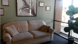 You Will Feel Comfortable in Patricia Pritchett's Calming Office